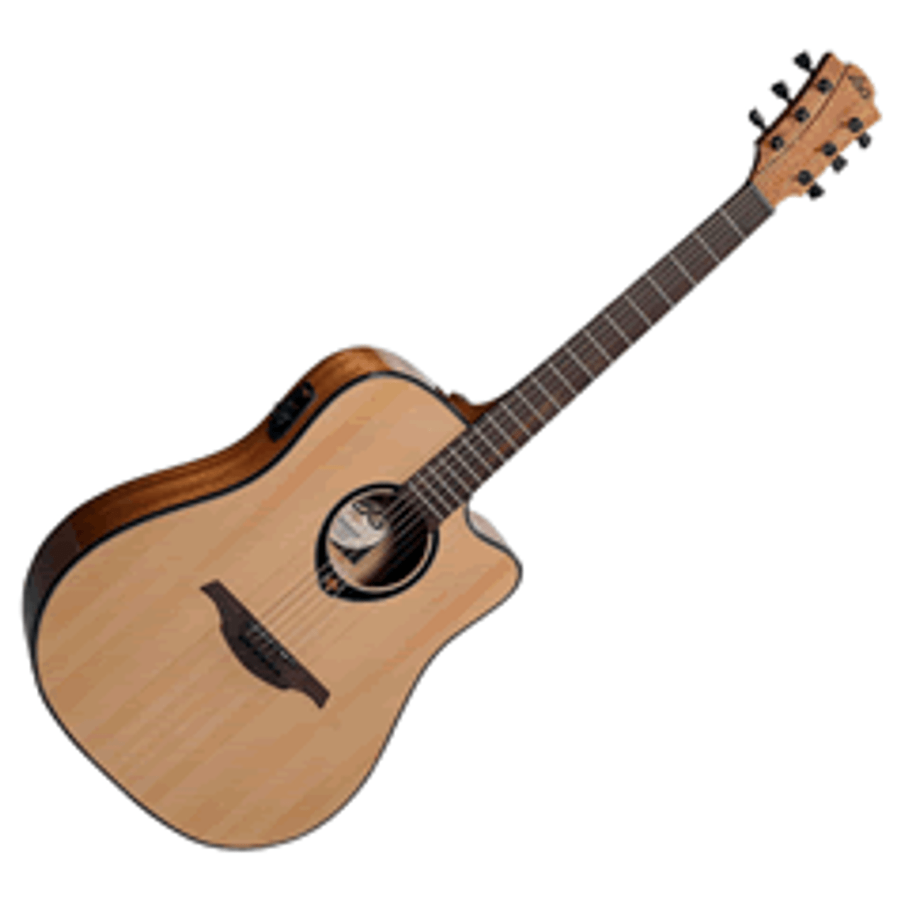 Acoustic/Electric Guitars