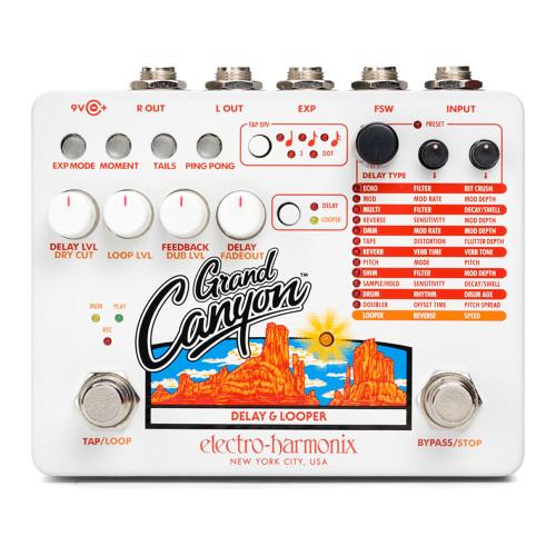 Electro-Harmonix Grand Canyon Delay and Looper
