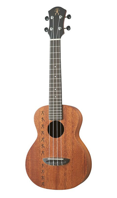 aNueNue Papa All Solid Acoustic/Electric Concert Ukulele