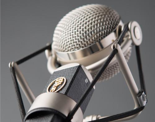 Blue Dragonfly Studio Condenser Microphone