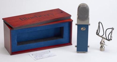 Blue Blueberry Large Diaphragm Studio Condenser Microphone
