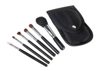 6 piece Cosmetic Makeup Brush Set in Travel Case