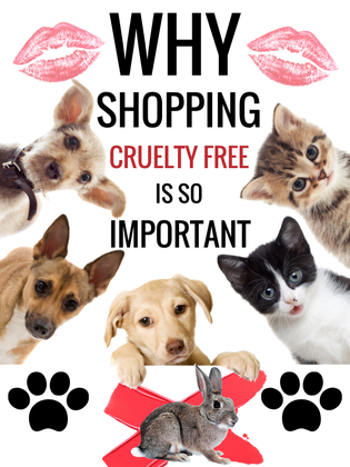 Why Cruelty-Free is so important!
