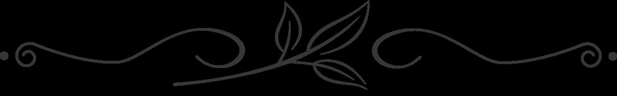 gray-leaf-divider.png