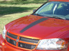 Hood of Dodge Avenger Racing Stripes AVENGED 2008-2013 2014