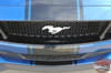 HYPER RALLY | 2018 Ford Mustang Center Graphics Stripes