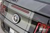 View of 2013-2014 Ford Mustang Center Stripe Kit VENOM KIT