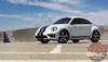 View of VW Beetle Racing Stripes BEETLE RALLY 2012-2016 2017 2018