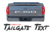 2021 Ford F-150 TAILGATE TEXT Decals Stripes Vinyl Graphic Kit fits 2021
