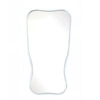 """Plasdent Occlusal Intraoral Photography Mirror, Extra large Adult occlusal - 3""""x 5 4/5""""x 2 1/2"""""""