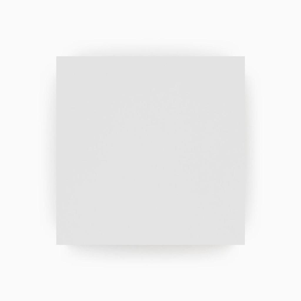 Premium Paint White Swatch