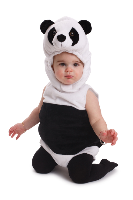 Cuddly Baby Panda Bear