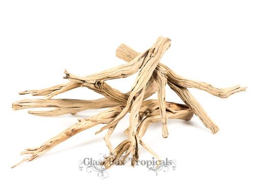 """(5) 10-14"""" Ghostwood Branch"""