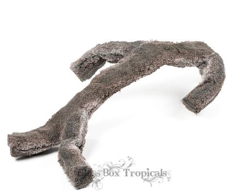 EpiWeb Branch - Large (60cm)