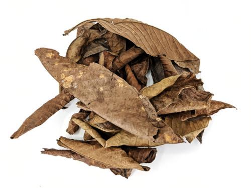 Guaba Leaf Litter Peru