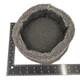 "EpiWeb Pot - Large (22cm - 8.5"")"