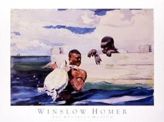 Turtle Pound Art Print - Homer