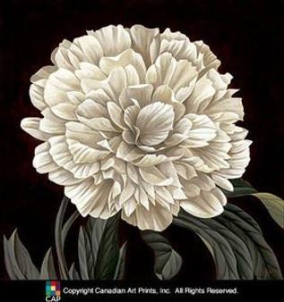 Full Bloom II (27.5 x 27.5) Art Print - Keith Mallett