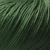 Airlie 4163 Grass