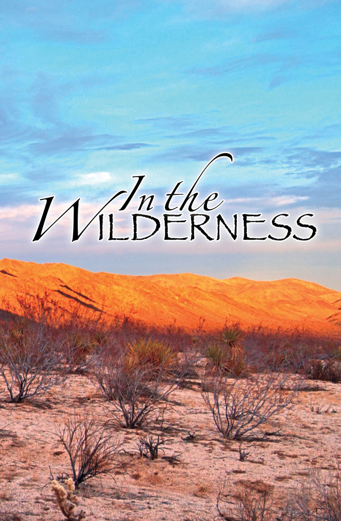 In the Wilderness - Adult Study Guide