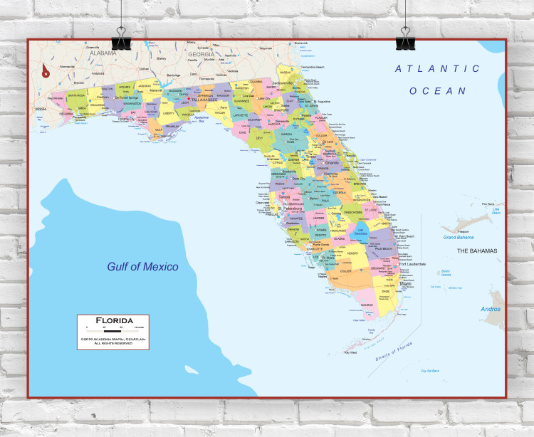 Florida State Political Wall Map