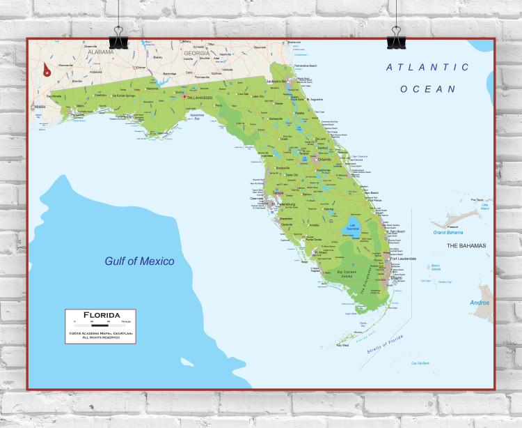 Florida Physical State Wall Map