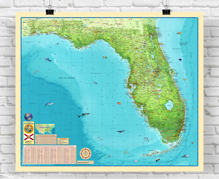 Florida Illustrated Wall Map from Compart