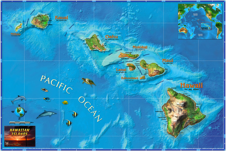 Hawaii Illustrated Wall Map from Compart