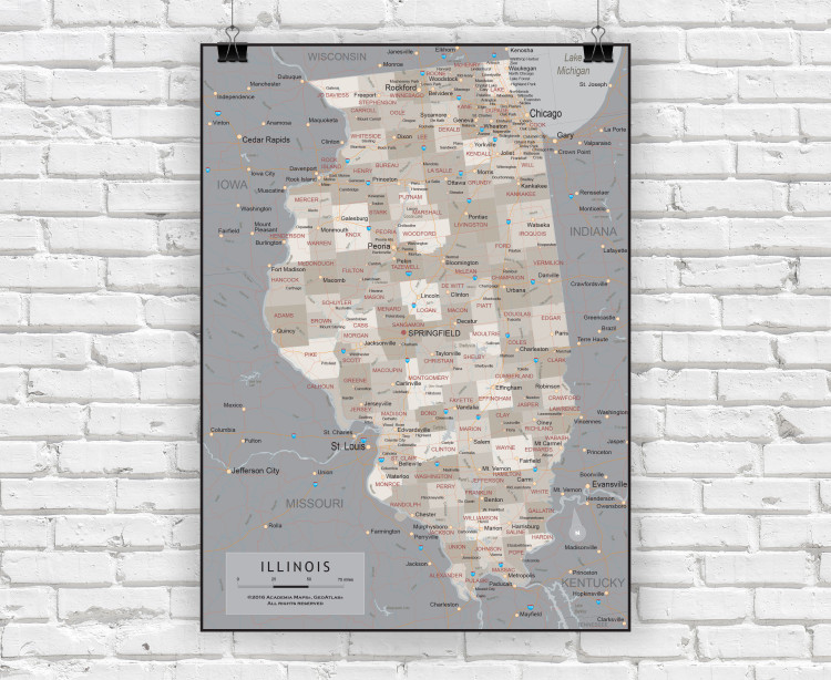 Illinois State Executive State Wall Map