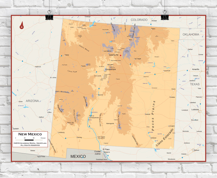 New Mexico Physical State Wall Map