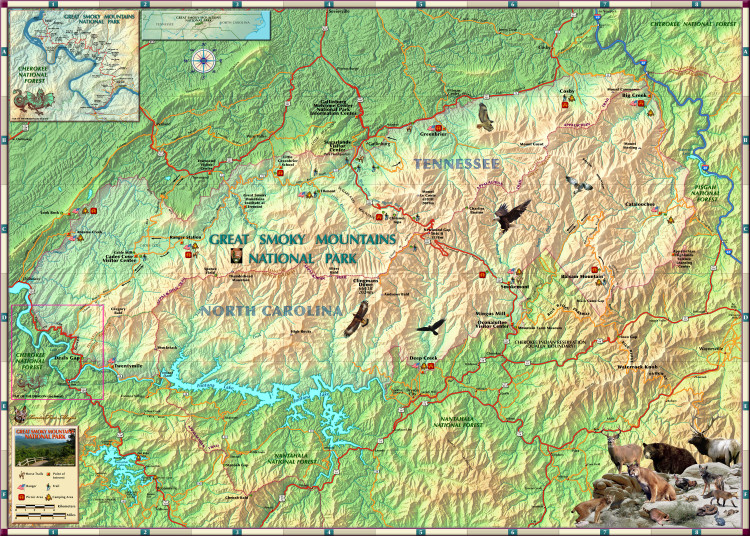 Great Smoky Mountains Illustrated Map from Compart