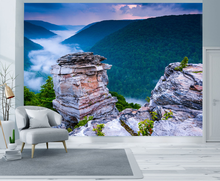 Blackwater Canyon  Allegheny Mountains Wall Mural