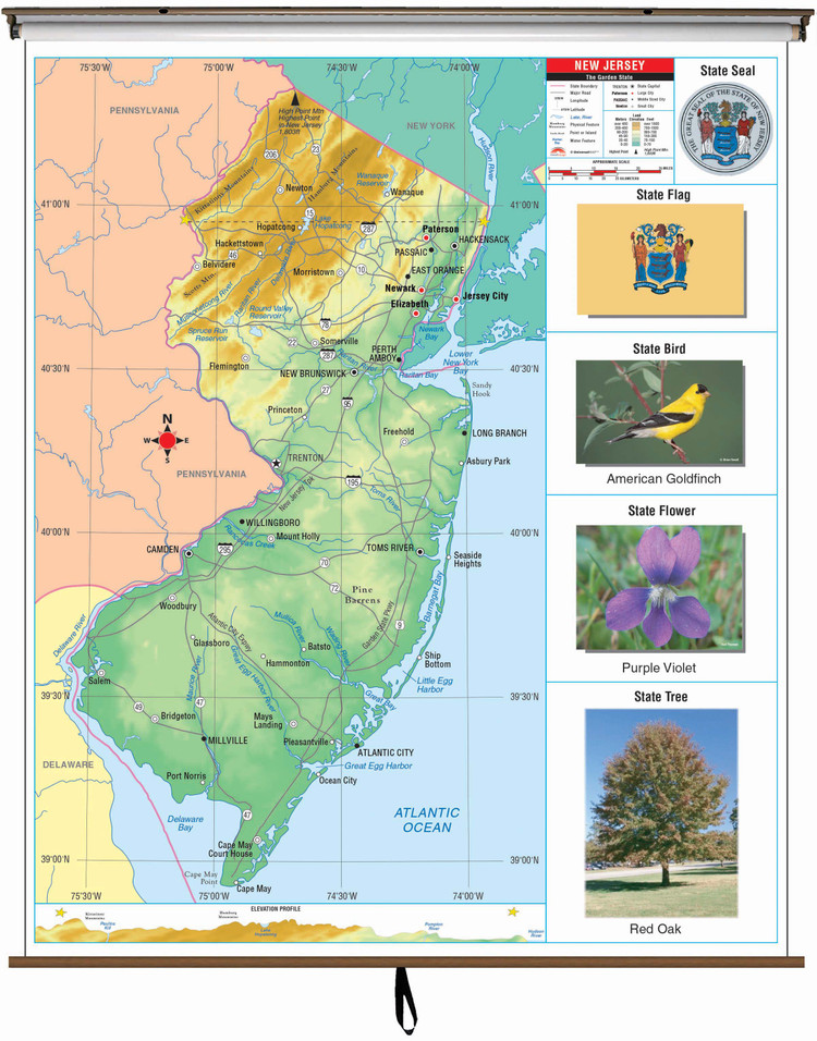 New Jersey Primary Thematic Spring Roller Map