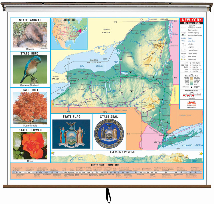 New York State Primary Thematic Classroom Map on Spring Roller from Kappa Maps