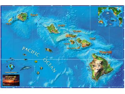 Hawaii Wall Map Posters