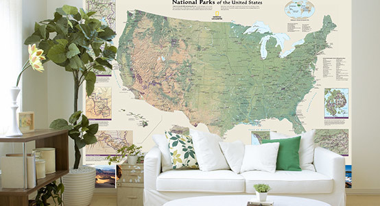United States Map Murals