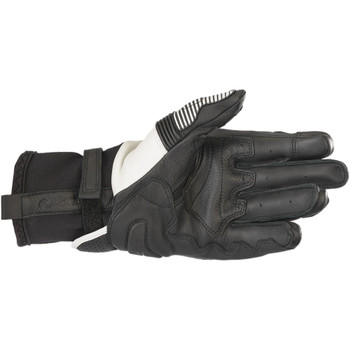 Alpinestars GP-X V2 Leather Gloves - Black/White
