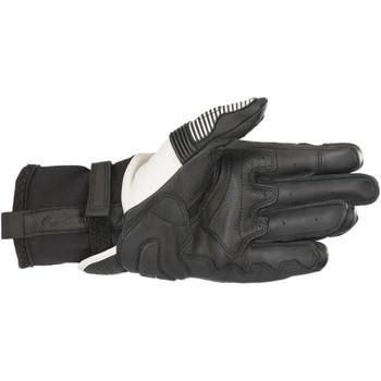 Alpinestars GP-X V2 Leather Gloves - Black/White