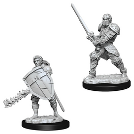 Nolzur's: Human Male Fighter (Wave 8)
