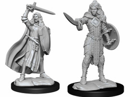 These are pre-primed miniatures of a human female champion, one is wielding a sword and a kite shield and the other has a sword and a round shield.