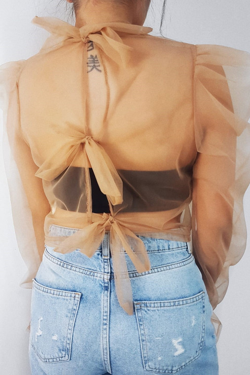 Nude Organza Tie Back Top