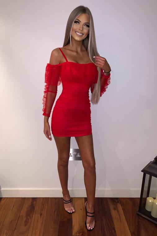 Red Organza Mini Dress
