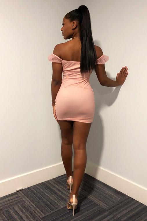 Pink Bardot Ruched Mini Dress (10 pack)