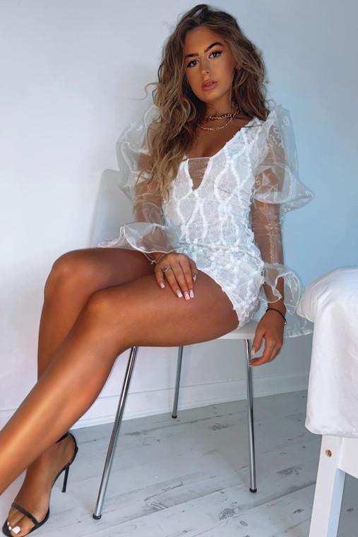 Cream Organza Sleeve Lace Applique Bodycon Mini Dress