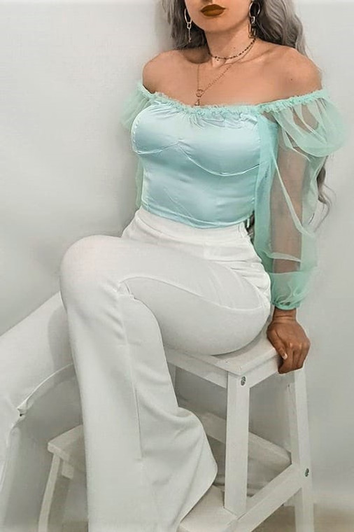 Mint Satin Organza Sleeve Crop Top