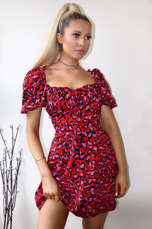 Red Leopard Print A-line Mini Day Dress