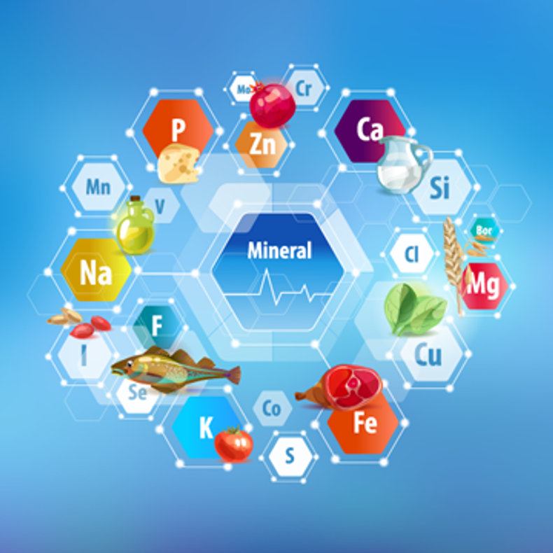 What are the Biological Functions of Minerals?