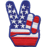 American Flag - Politics