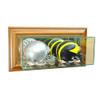 Wall Mounted Double Mini Helmet Display Case