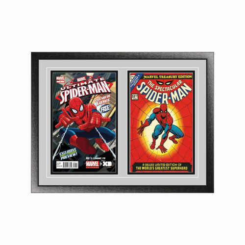 Double Comic Book Frame with Classic Moulding
